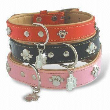 pet-products-15